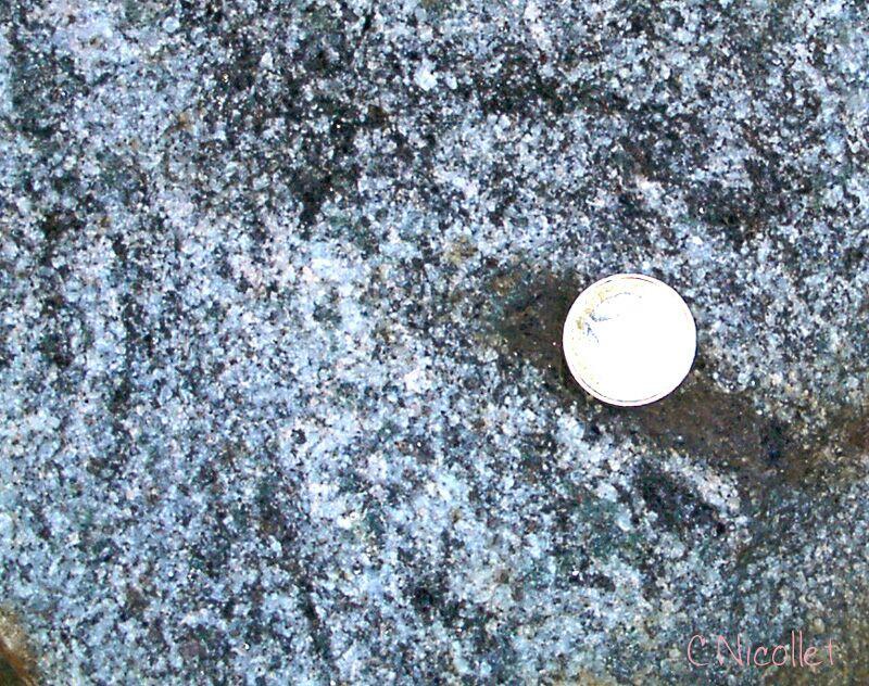 Les Granites et Roches Associées